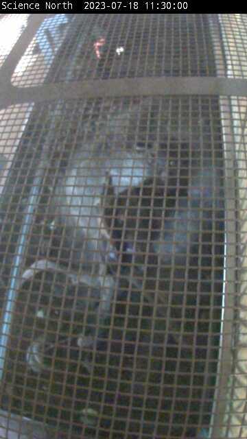 Webcam in Greater Sudbury